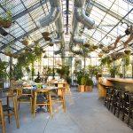 mẫu thiết kế quán cafe đẹp