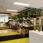Xu hướng thiết kế nội thất phong cách Eco